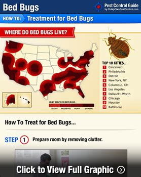 getting rid of bed bugs diy remove bed bugs from mattress home decorations idea