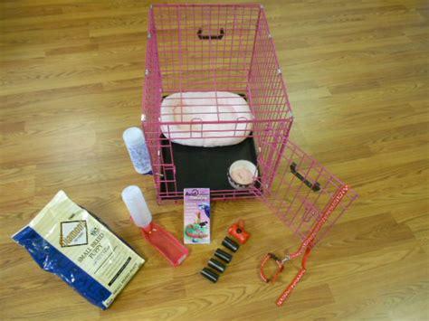 puppy starter pack il 618 521 0159 happy tails enterprises