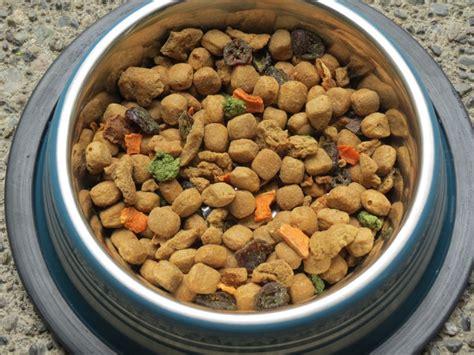 fresh pet food freshpet food coupons recipes food