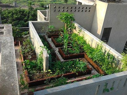 16 best rooftop garden india images on pinterest rooftop gardens rooftops and terraces