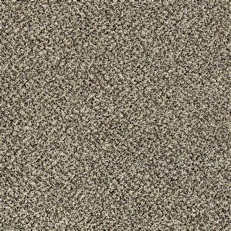 home decorators carpet home decorators collection carpet sle wholehearted ii color ivory dust twist 8 in x 8 in