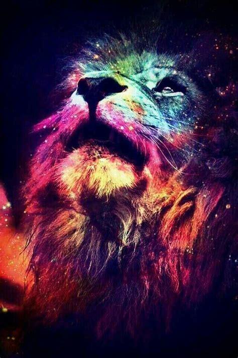 imagenes de leones swag 103 best lions roar my fight name images on pinterest