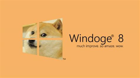 Doge Meme Pictures - another reason to thank the internet gifting us the doge