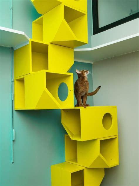 cat wall shelves climbing best 25 cat climbing wall ideas on cat wall