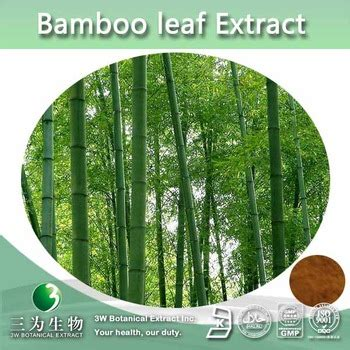 Obral Bamboo Leaf Essence Herbal Suplement 100 bamboo extract powder bamboo leaf extract 4 1 10 1 20 1 buy 100 bamboo