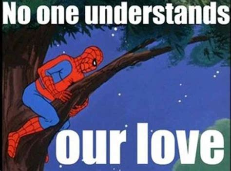 Funniest Spiderman Memes - the best of spiderman memes 26 pics picture 14