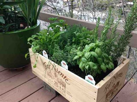 Wine Crate Planter by 1 X 12 Bottle Large Wooden Wine Crate Box Idea