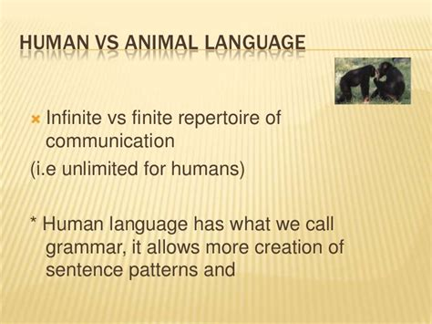 sentence patterns discussion introduction to linguistics ppt