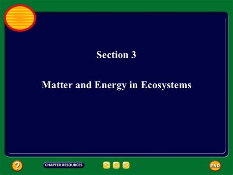 section energy flow in ecosystems section energy flow in ecosystems 28 images energy