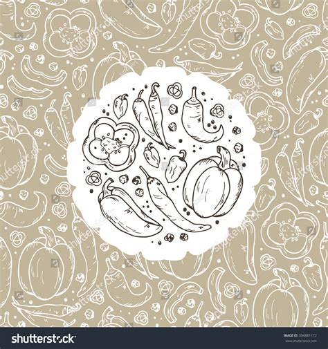 doodle pepper vector vegetables spices pepper label seamless stock