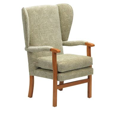 armchairs for the elderly chairs for elderly disabled manage at home