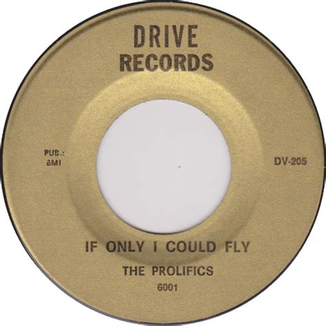 If Only I Could Fly 45cat the prolifics if only i could fly keep on