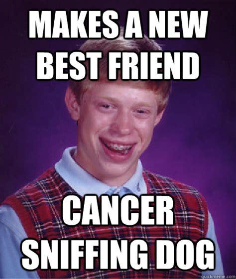 Best Bad Luck Brian Memes - bad luck brian memes quickmeme
