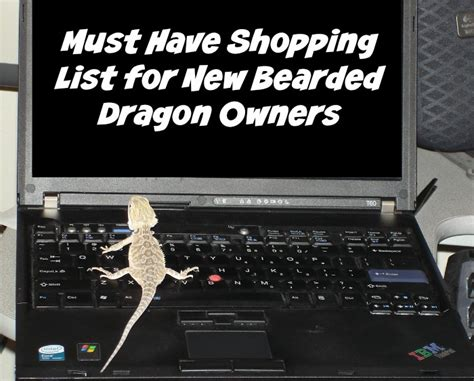Must Haves For 2007 Your Shopping List by Must Shopping List For New Bearded Owners