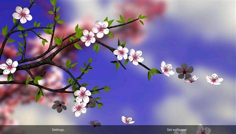 google images flower spring flowers 3d parallax pro android apps on google play