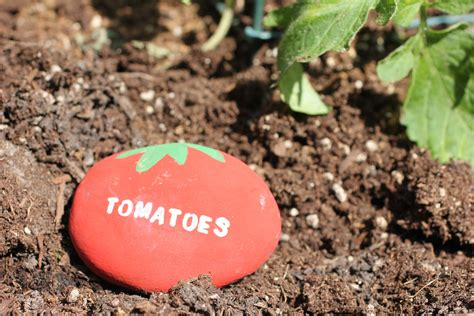 Garden Signs For Vegetables Repeat Crafter Me Vegetable Garden Rock Signs