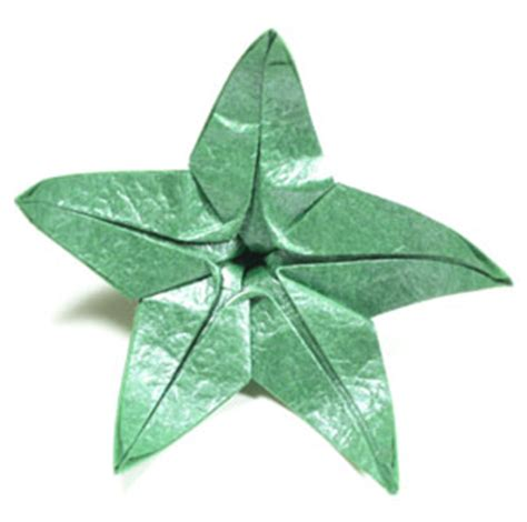 origami calyx 28 images how to make a five sepals