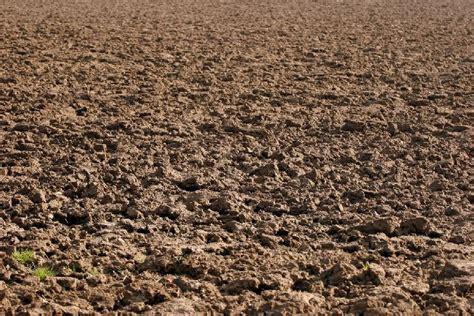 e terreni stanchezza terreno pratiche per la cura dell orto