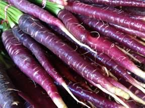 purple carrot review wall street international