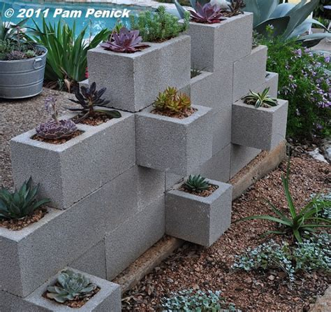 succulents thriving in cinderblock wall planter