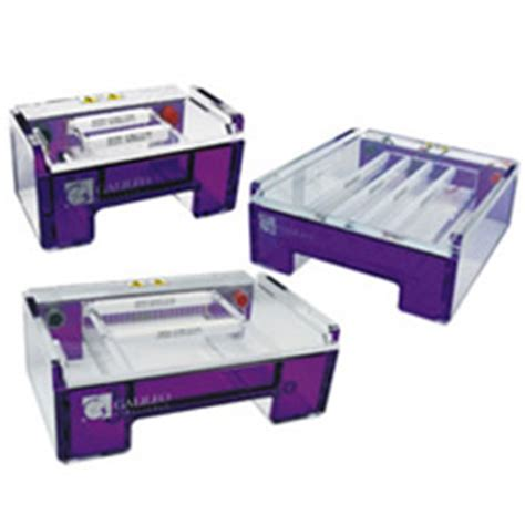lab bench electrophoresis search by product discovery scientific solutions