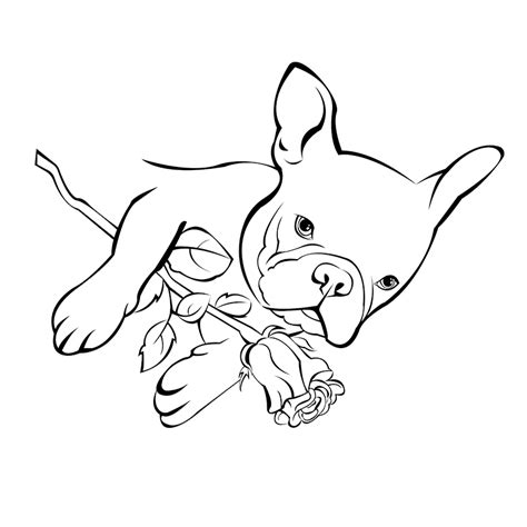 baby bulldogs coloring pages french bulldog rose lion head coloring page bulldog