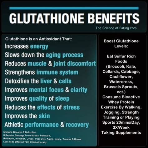 Glutathione Detox Symptoms by 1272 Best Images About Health On