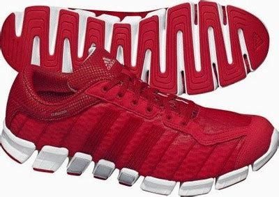 Sepatu Adidas Keluaran Baru adidas climacool ride untuk pelari yang ingin gaya