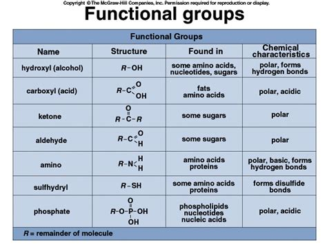 carbohydrates hydrophilic carbohydrates carbohydrates hydrophilic