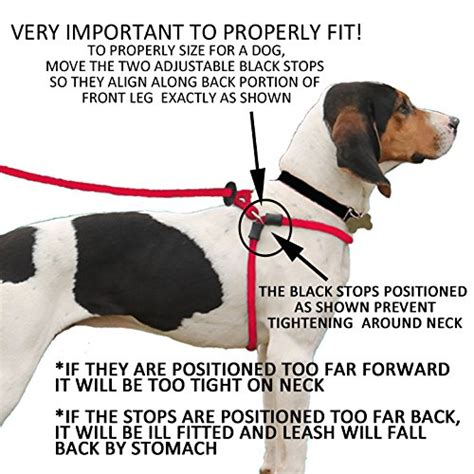 best harness for dogs 5 of the best harnesses for dogs that pull the effect