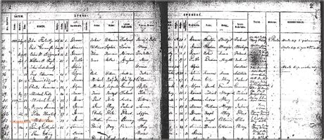 Denver County Marriage Records Comparing Details In Different Marriage Records For The Same Ancestors Family Tree