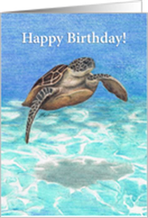 Happy Birthday Turtle Card Birthday Cards With Turtles And Tortoises From Greeting