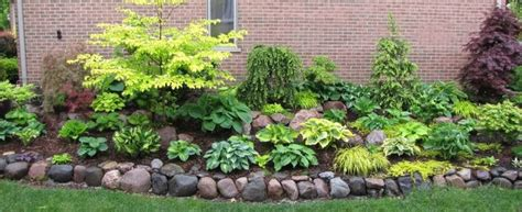 best plants for north side of house 15 best images about north side of house landscaping on pinterest gardens