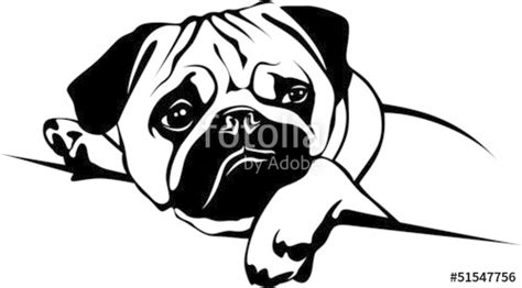 pug vector free quot mops pug quot stock image and royalty free vector files on fotolia pic 51547756