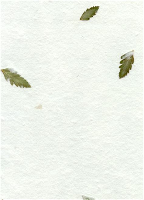 Fern Paper Wedding Invitation Kits by Ingredients For Wedding Invitations Leather Fern