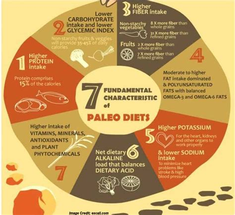 paleo with whole grains paleo diet plan review how safe and effective is this