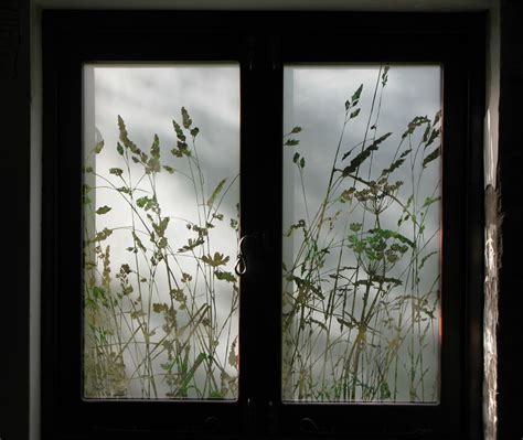 glass etching designs for kitchen wild grasses kitchen windows antonia macgregor
