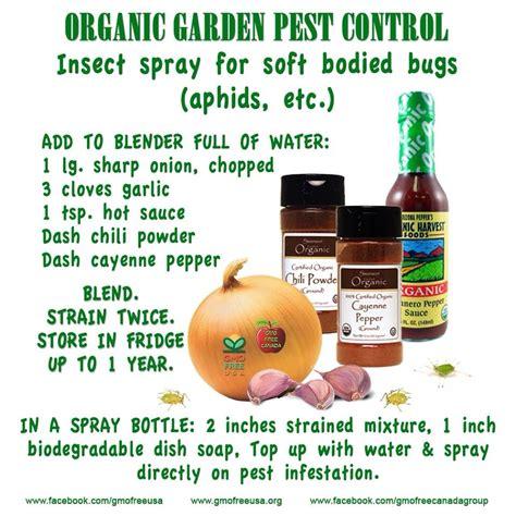 backyard pest control organic garden pest control recipe trusper