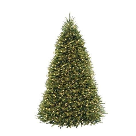 top 10 pictures of christmas trees for christmas day 10 ft dunhill fir artificial christmas tree with 1200