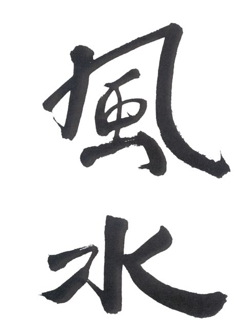 feng shui symbols blackbirds bumblebees feng shui money bags