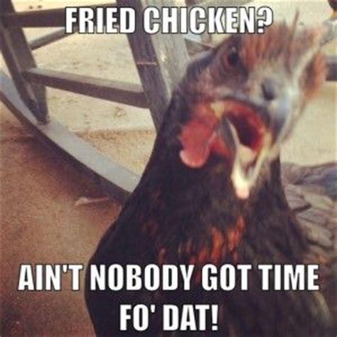 Chicken Meme - best 25 chicken humor ideas on pinterest egg farm on
