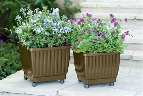 What Is Planters by Self Watering Rolling Planter 17 Quot Gardener S Supply