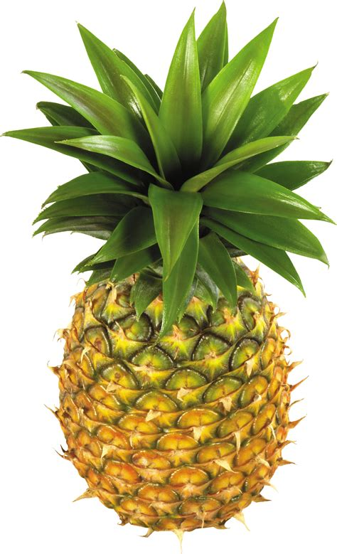 Pineapple Fruit fruits and nuts png images pictures free