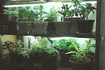 sage gardener setting  indoor grow lights
