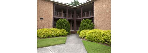 Two Bedroom Apartments In Greenville Nc by Awesome One Bedroom Apartments In Greenville Nc J21