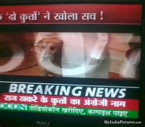 Funny indian tv news hindi