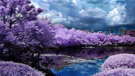 imagenes de paisajes bellos paisajes bellos del mundo related keywords paisajes