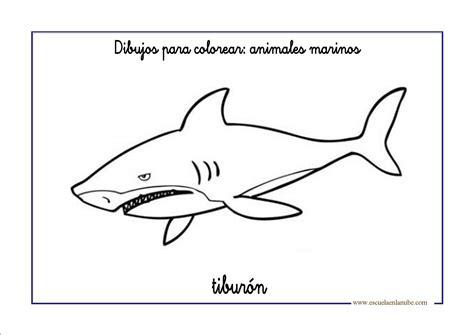imagenes para colorear tiburon tiburon