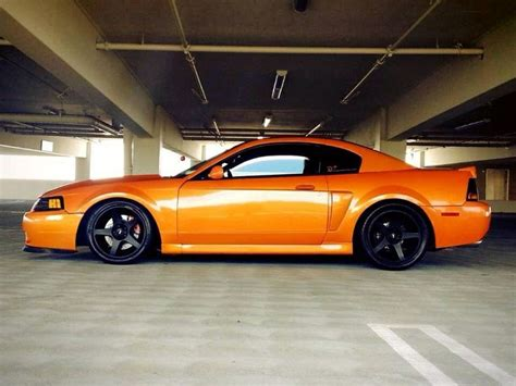 cool mustang colors 18 best images about david on cars shelby