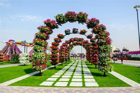 dubai miracle garden the world s flower